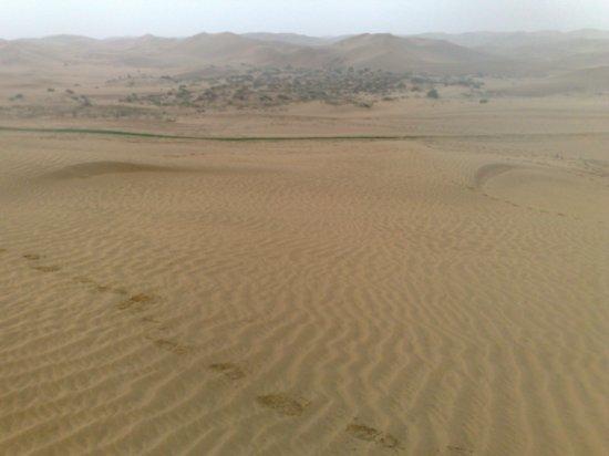18-Hohhot Desert Adventure