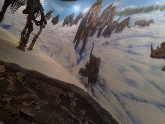 7-Inner Mongolia Museum