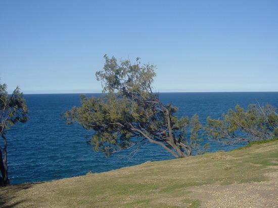 The Sunshine Coast (28)