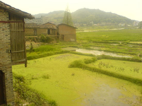 Ancient Heping Town (29)