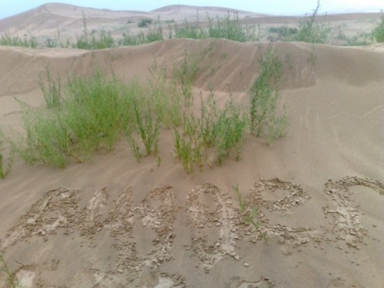 9-Hohhot Desert Adventure