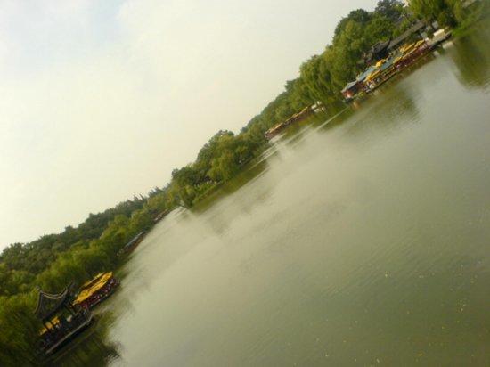Yangzhou - Slender West Lake & Bonsai 5