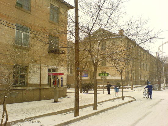 The Last Snow Shots (7)