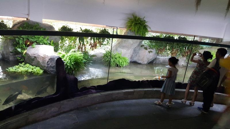 Shanghai Zoo Adventure