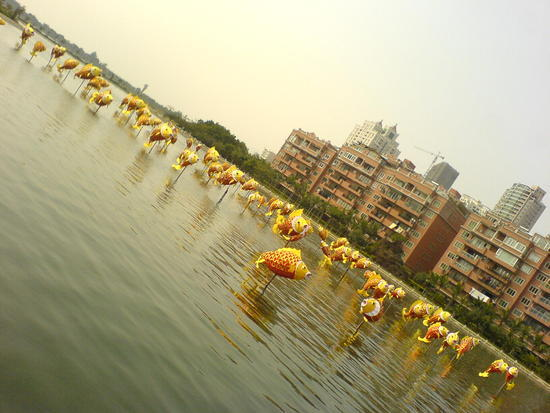 Yundang Lake Area (1)