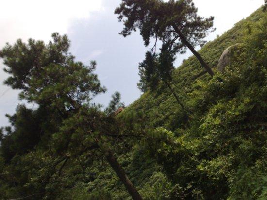 8-Jigongshan Third Day Adventure