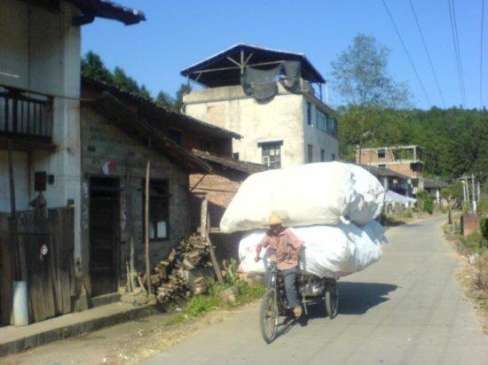 The Great Autumn Rice Harvest Ride 31