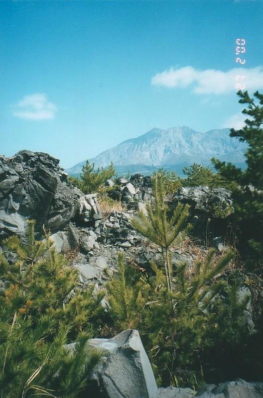 Kakoshima Bay & Sakurajima (6)