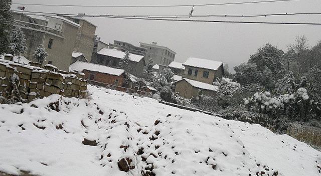 Happy Snowy New Year
