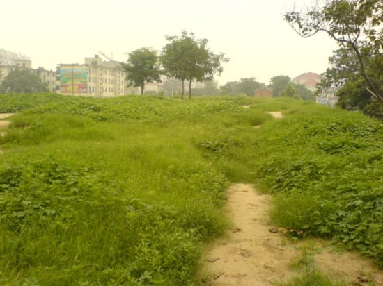 Zhongzhou - City Walls N Amigo 7