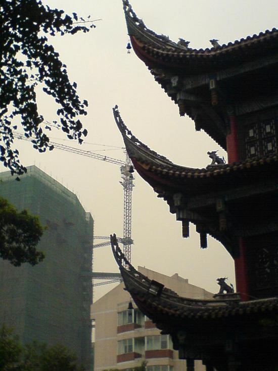Wenshu &  Temple Renmin Park (9)