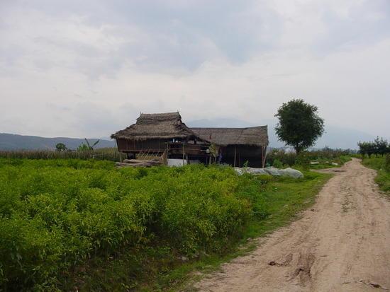 Jinhong Hill N Village Ride (4)