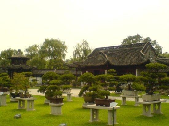 Yangzhou - Slender West Lake & Bonsai 22