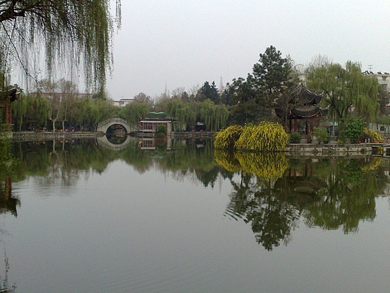 City Lotus Park & Pond