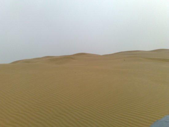 34-Hohhot Desert Adventure