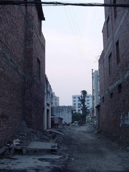My Tianyang - Walk About (5)