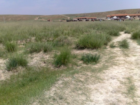 35-Hohhot Grasslands Adventure