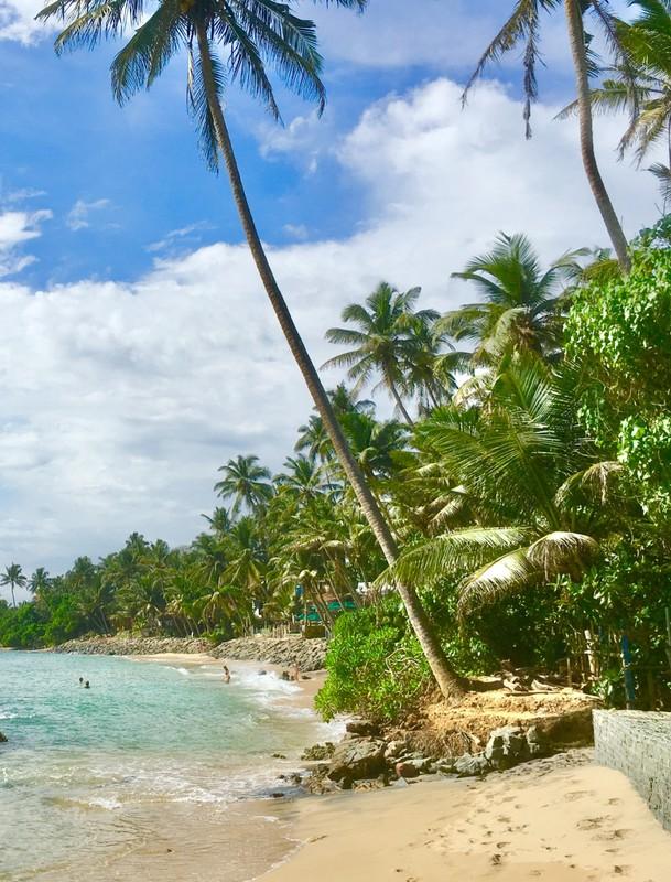 Our local beach at Mirissa
