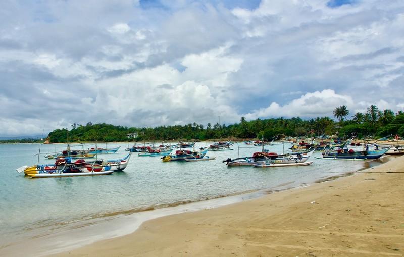 Mirissa traditional fishing boat fleet