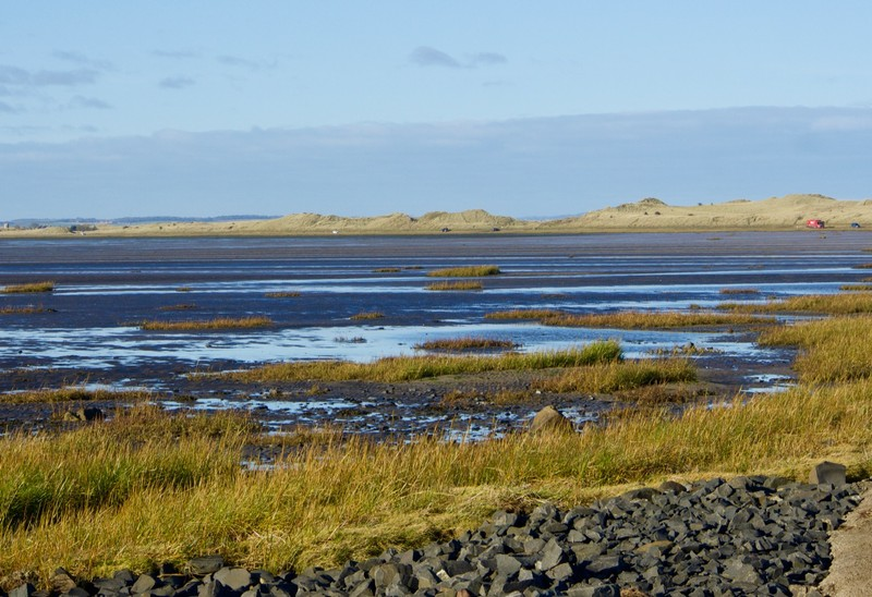 Lindisfarne causeway in the background at low tide