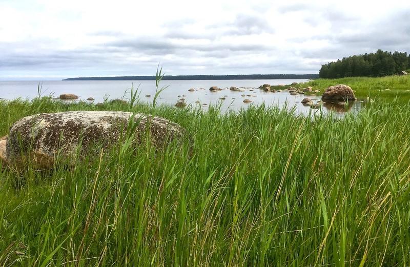Coastal walk in Lahemaa National Park