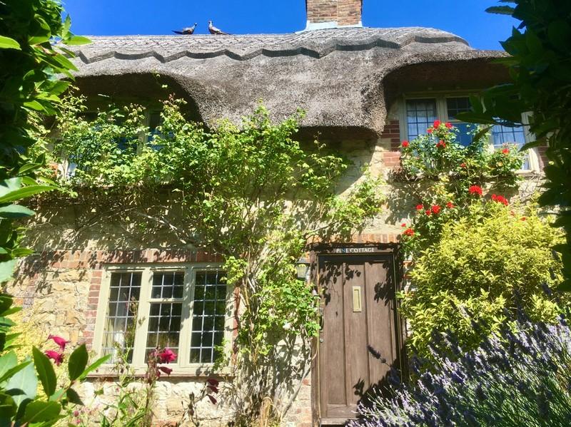Thatch cottage in Sussex