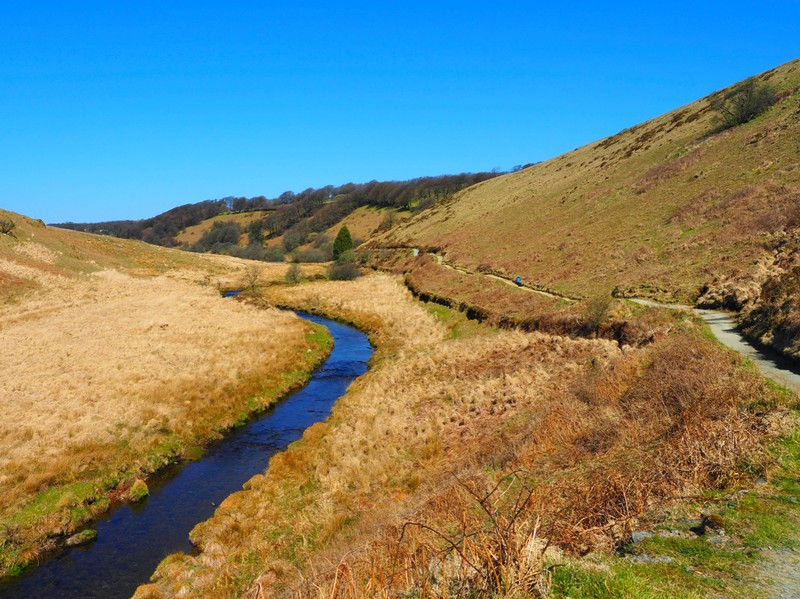 The River Barle walk