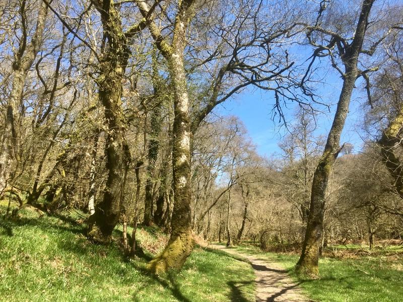 walk from Tarr Steps