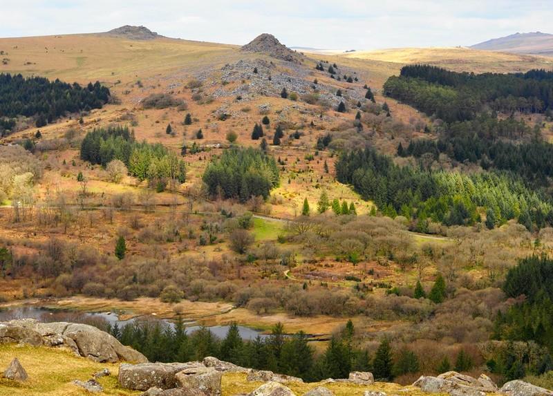 Dartmoor Scenery