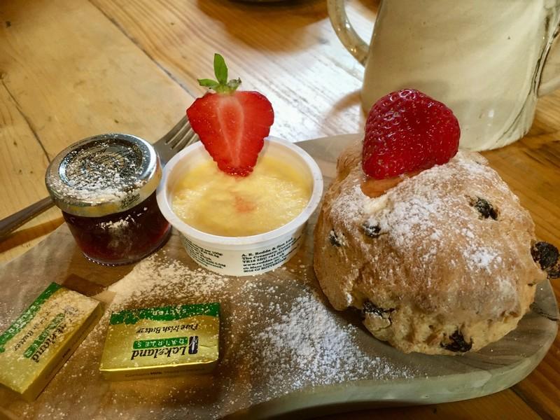 Cream Tea at the Garlic Farm