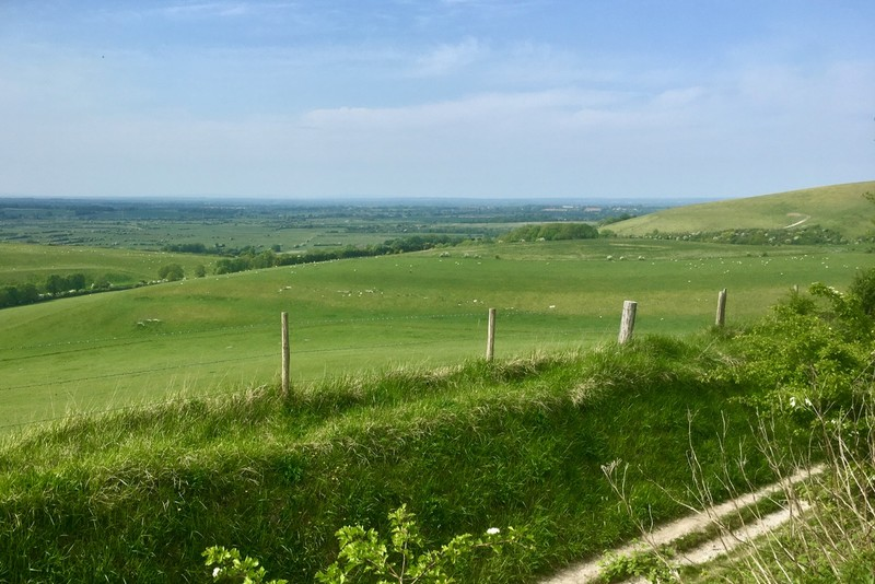 More Downland views