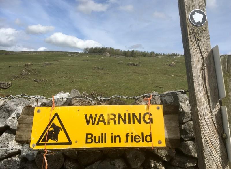 Warning signs of BULL