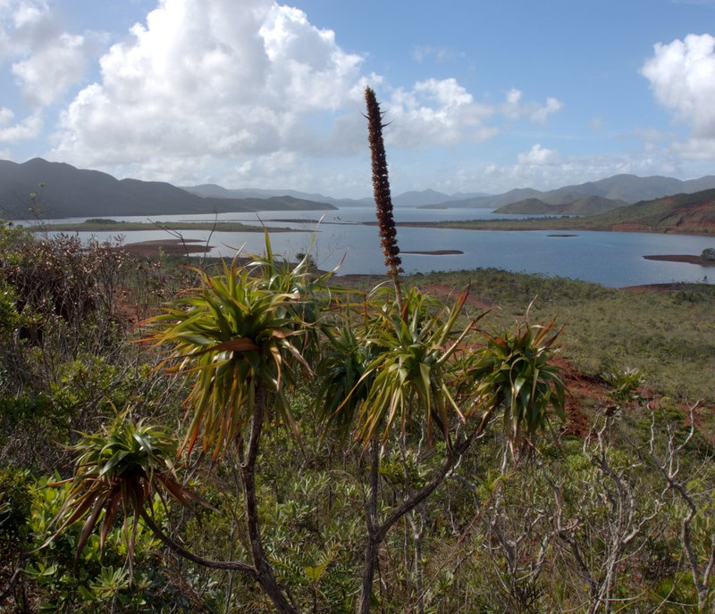 Parc Provincial de la Riviere Bleue