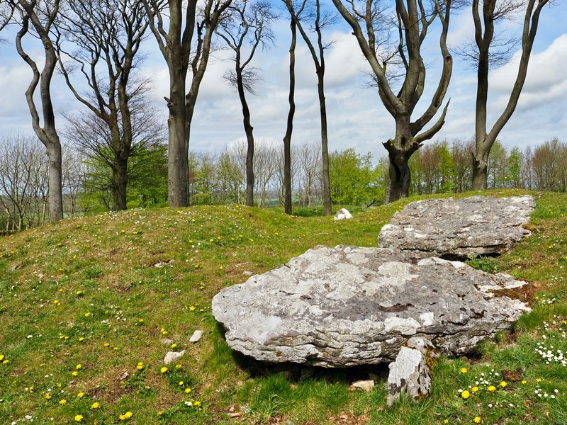 Bronze Age bowls barrow