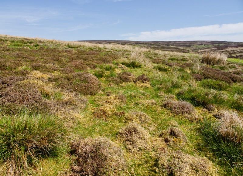Moors walk from Langthwaite