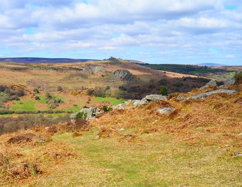 Dartmoor scenery along Haytor walk