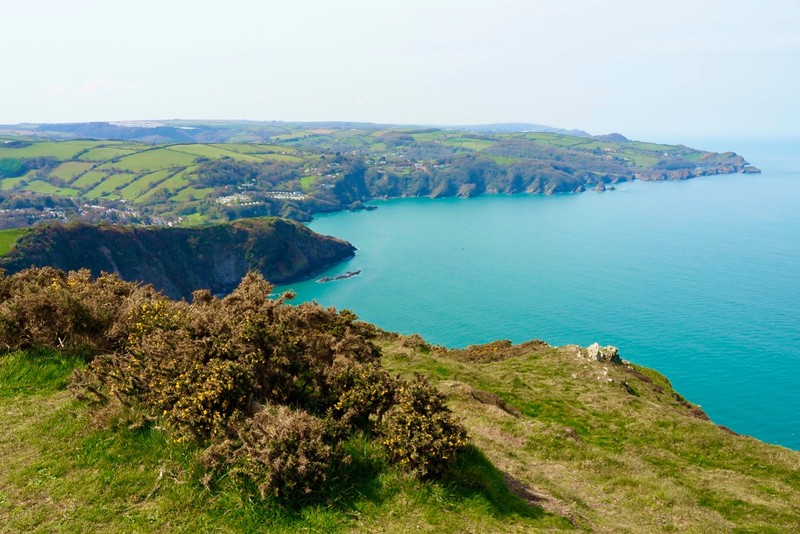 Cliff view back towards Combe Martin