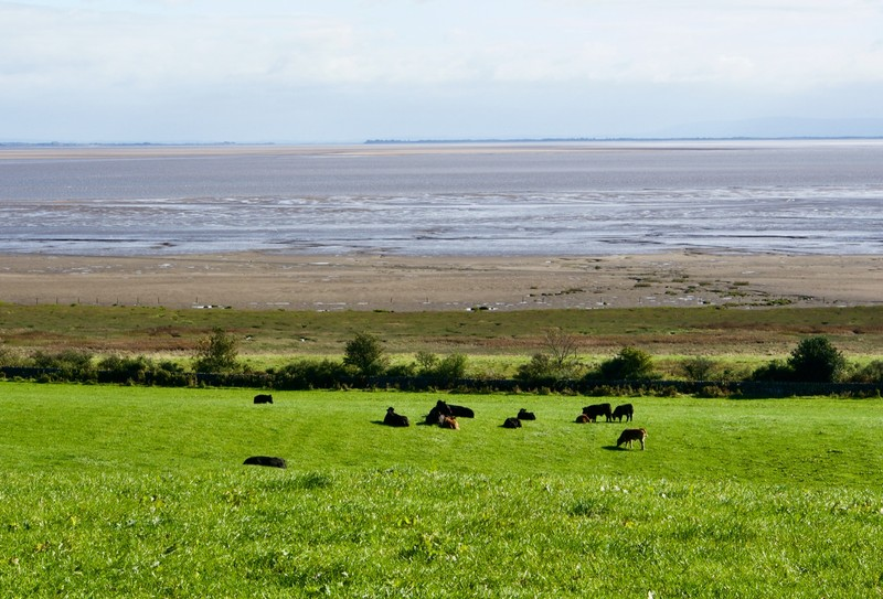 Mud flat at Solway Firth