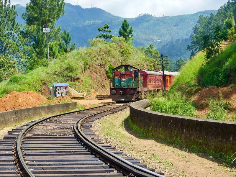 The Train!