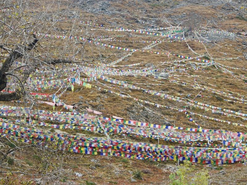 Hill of prayer flags