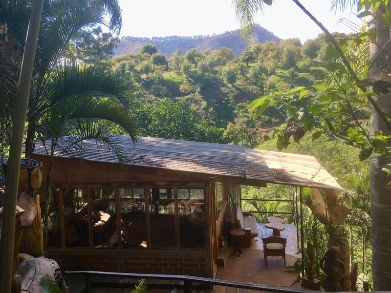Our garden in Uruapan