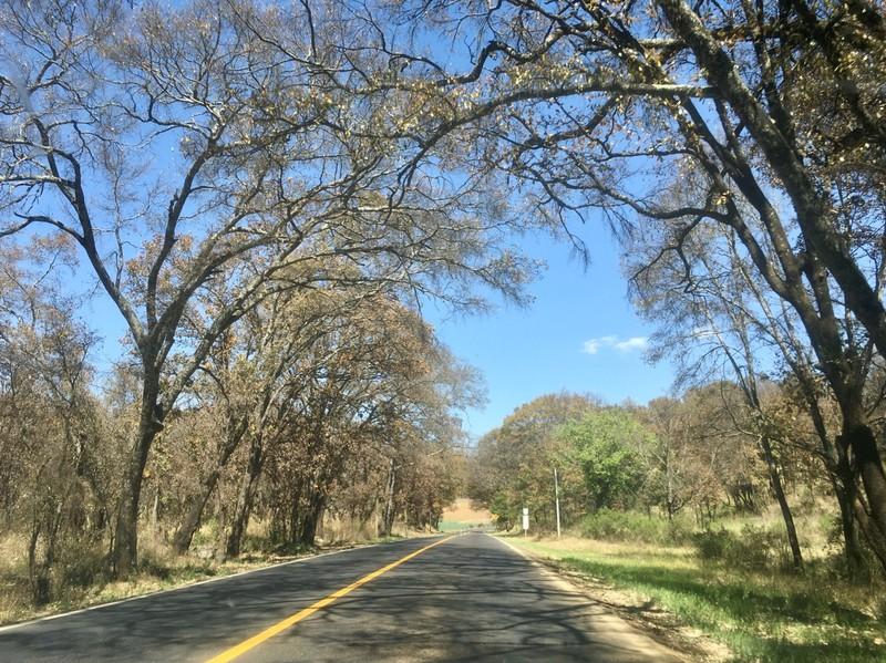 Roads scenery in Michoacan