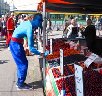 Blueberry Man buying blueberries at the Central Market