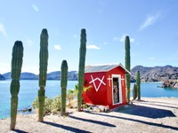 Road side shrine in Baja Concepcion