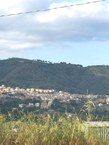 View of Chiaravalle Centrale