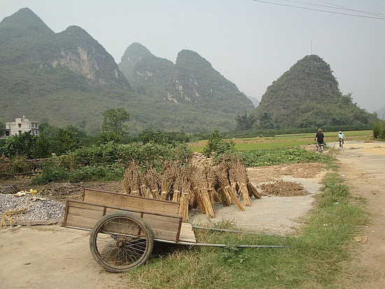 Cart, Straw & mountains