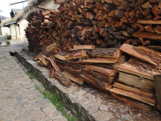 Stocking up on firewood for winter
