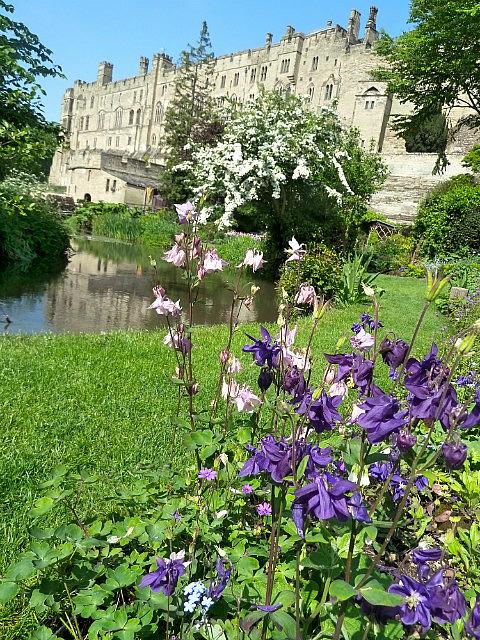 Flowers & Castle