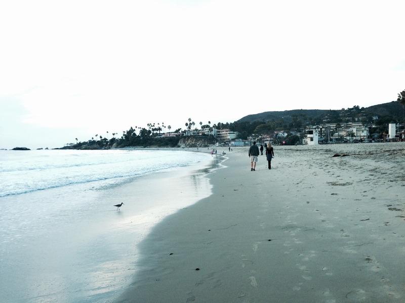 Laguna Beach Headland