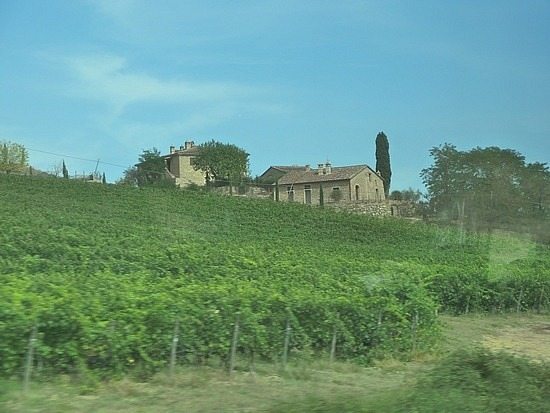Countryside from the bus